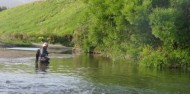 Guided Fishing - River Talk Guiding image 2