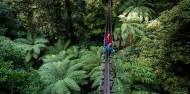 Ziplining - Original Canopy Tour image 7