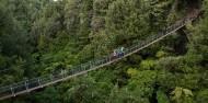 Ziplining - Ultimate Canopy Tour image 9