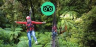 Ziplining - Original Canopy Tour image 1