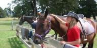 Horse Riding - Rubicon Valley Horse Treks image 1
