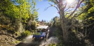 Scenic Guided Buggy Ride - Off Road Expeditions image 3
