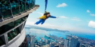 SkyJump & SkyWalk image 6