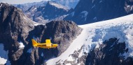 Milford Flight & Cruise - Southern Alps Air image 4
