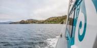 Stewart Island Ferry image 3