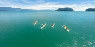 Kayaking - 2 Day Abel Tasman Brief Encounter image 1