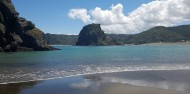Auckland to Piha Shuttle Bus – Trippy image 5