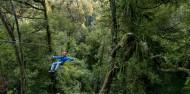 Ziplining - Ultimate Canopy Tour image 5
