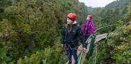 Ziplining - Ultimate Canopy Tour image 7