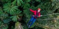 Ziplining - Ultimate Canopy Tour image 6