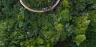 Ziplining - Ultimate Canopy Tour image 3