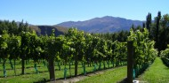 Private Twilight Food & Wine Experience image 4
