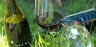Waiheke Island Wine & Dine Tour image 6