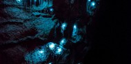 Hobbiton & Waitomo Day Tour image 2