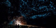 Full Day Tour Waitomo Glowworm Caves, Ruakuri Cave & Hobbiton - Headfirst Travel image 1