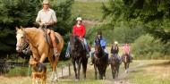 Horse Riding - Walter Peak image 6