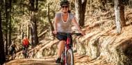Bike Tours - Wanaka Bike Tours image 2