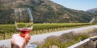 Wine Sampler Tour - Altitude Tours image 1
