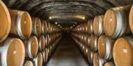 Wine Sampler Tour - Altitude Tours image 3