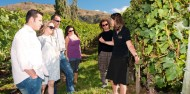 Wine Tours - Queenstown Wine Trail image 1