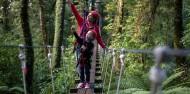 Ziplining - Original Canopy Tour image 2