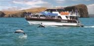 Akaroa Harbour Nature Cruise image 2
