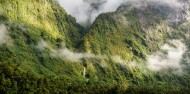 Fiordland Expeditions Overnight Cruise image 5