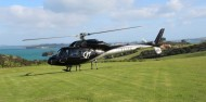 Helicopter Flights - Inflite image 1