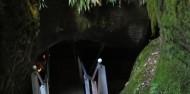 Te Anau Glow Worm Caves image 2