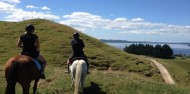 Horse Riding - Adventure Playground image 1