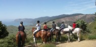 Horse Riding - Adventure Playground image 4