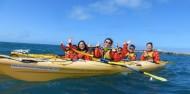 Kayaking - Kaikoura Kayaks image 8