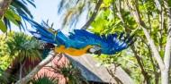 Auckland Zoo - Te Wao Nui - The Living Realm image 1