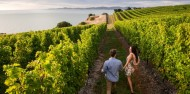 Wine Tours - Marlborough Jade Tours image 1
