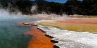 Half Day Wai-O-Tapu Thermal Wonderland Tour - Headfirst Travel image 4