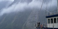 Doubtful Sound Overnight Cruise Twin Share image 7