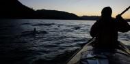 Kayaking - Rangitoto Island Tour image 7