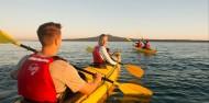 Kayaking - Rangitoto Island Tour image 6