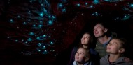 Te Anau Glow Worm Caves from Queenstown image 2