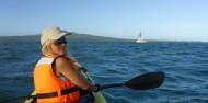 Kayaking - Rangitoto Island Tour image 5