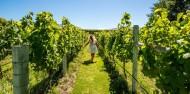 Wine Tours - Wanaka Wine Tours image 1