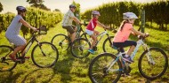 Bike Tours - Marlborough Wineries image 7
