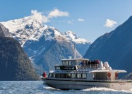 Small Group Milford Sound Coach Cruise Coach