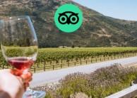 Wine Sampler Tour - Altitude Tours