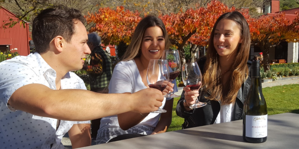 Wine Tours - Queenstown Wine Trail