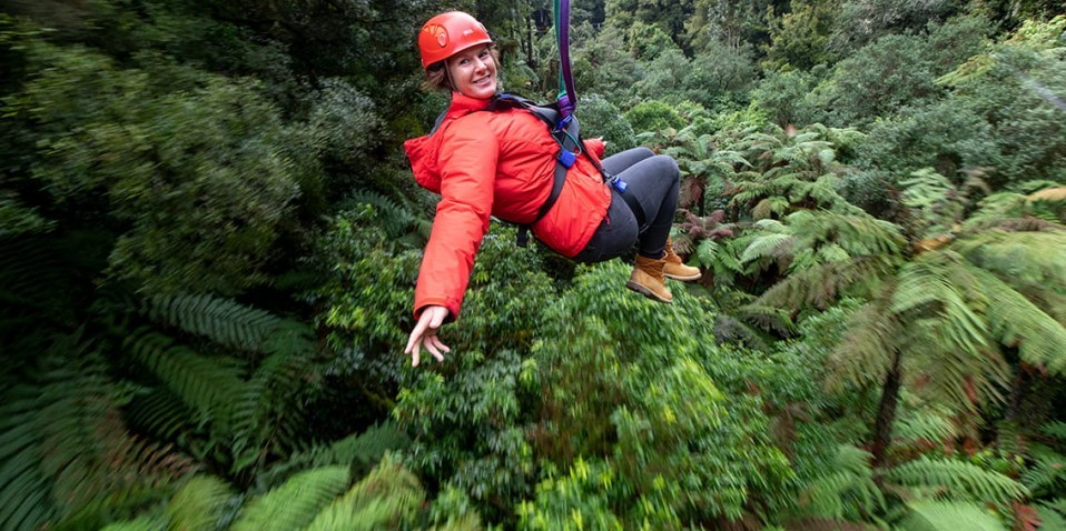 Ziplining - Ultimate Canopy Tour