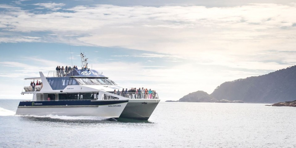 Doubtful Sound Wilderness Day Cruise - Real Journeys